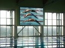 Полноцветное светодиодное спортивное табло для крытого бассейна Полесского государственного университета.